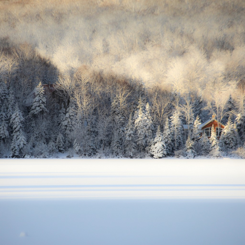 Vacker. Jag höll på att glömma. Vintern kan vara vacker. Också! Bild av Dennis Collert på Flicker.com